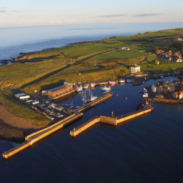 Eyemouth Harbour is named as preferred location for Operation & Maintenance base.
