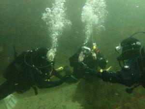 Dive Shore Access - Survey
